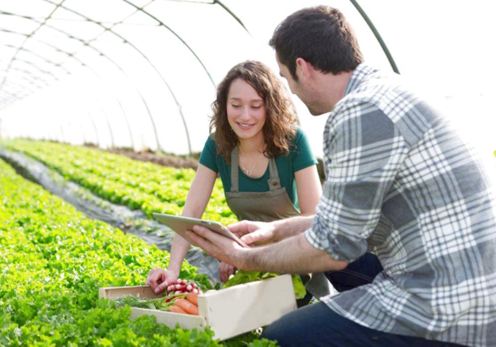 AGRICOLTURA E INNOVAZIONE TECNOLOGICA Come è cambiato l'agricoltore